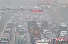 Hyundai triệu hồi gần 79.000 ôtô để sửa lỗi ở hệ thống xả khí