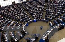 Đức củng cố an ninh mạng trước thềm bầu cử Nghị viện châu Âu