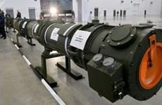Bộ Quốc phòng Nga tiết lộ thông tin chi tiết về tên lửa 9M729