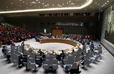 Hội đồng Bảo an nhất trí tiến hành cuộc họp khẩn về Venezuela