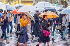 Nhật Bản phát triển radar công nghệ cao dự báo mưa trước 30 phút