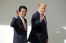 Nhật Bản thừa nhận đề cử ông Trump cho giải Nobel Hòa bình