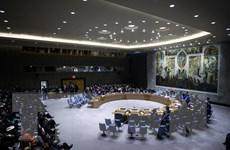 Nga trình dự thảo nghị quyết về Venezuela lên Hội đồng Bảo an