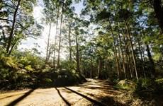 Australia chi gần 16 triệu USD cho dự án môi trường cấp địa phương