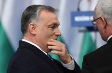 Nhóm đảng lớn nhất trong Nghị viện châu Âu nêu điều kiện với Hungary