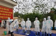 Thủ đô Hà Nội diễn tập phòng chống dịch tả lợn châu Phi