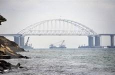 Nghị sỹ Nga kêu gọi hạn chế chiến hạm nước ngoài đi vào lãnh hải