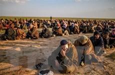 Thổ Nhĩ Kỳ và Nga tăng cường hợp tác trong vấn về Syria