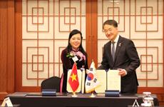 Việt Nam và Hàn Quốc thúc đẩy hợp tác trong lĩnh vực y tế