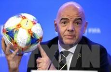 FIFA đề xuất mở rộng số đội tham dự World Cup 2022 lên 48