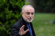 Iran xây thêm 2 tổ máy nhằm mở rộng nhà máy điện hạt nhân Bushehr