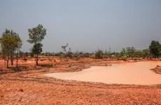 Hơn 67.000ha có khả năng bị hạn hán, xâm nhập mặn nếu không có mưa