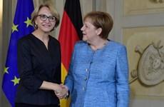 Pháp lo ngại về các chính sách xuất khẩu vũ khí khó lường của Đức