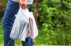 New York sẽ trở thành bang thứ 2 tại Mỹ cấm sử dụng túi nilon