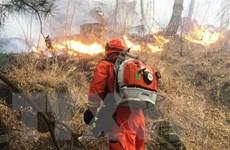 Trung Quốc khống chế thành công đám cháy rừng khiến 30 người tử vong