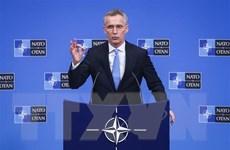 Tổng thư ký NATO ủng hộ nỗ lực tăng chi tiêu quốc phòng của Mỹ