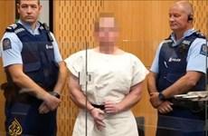 Xả súng New Zealand: Nghi phạm bị cáo buộc thêm 49 tội danh giết người