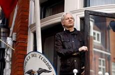 Nhà sáng lập WikiLeaks đòi Thụy Điển bồi thường gần 1 triệu USD