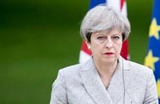 Nghị sỹ Bảo thủ phản đối quyết định gia hạn Brexit của Thủ tướng Anh