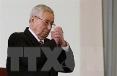 Tổng thống tạm quyền Algeria cam kết tổ chức bầu cử trong vòng 3 tháng