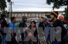 Mỹ không tiếp tục chính sách tách trẻ em nhập cư trái phép khỏi bố mẹ
