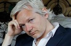 Cộng sự của nhà sáng lập WikiLeaks bị bắt giữ khi đang cố trốn chạy