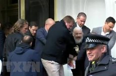 [Video] Ecuador bị tấn công mạng dồn dập sau vụ bắt giữ J. Assange