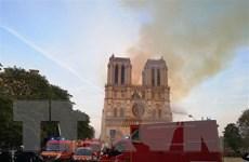 [Video] Các lãnh đạo bàng hoàng trước thảm kịch Nhà thờ Đức bà Paris