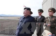 [Video] Triều Tiên thử loại vũ khí mang đầu đạn công phá mạnh
