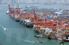 Xuất khẩu của Hàn Quốc có thể cải thiện trong nửa cuối năm nay