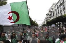 Algeria: Biểu tình lớn phản đối quan chức chính quyền cũ tại nhiệm