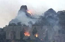 [Video] Cảnh báo nguy cơ cháy rừng cấp độ cực nguy hiểm tại nhiều tỉnh