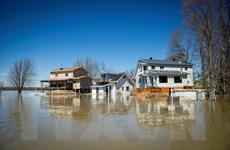 Thêm một thành phố của Canada ban bố tình trạng khẩn cấp vì lũ lụt