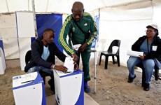 Gần 27 triệu cử tri Nam Phi tham gia bỏ phiếu tổng tuyển cử