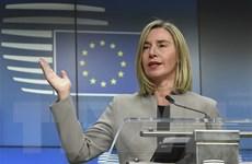 Mỹ, Anh, Pháp, Đức họp bàn khẩn cấp về vấn đề Iran