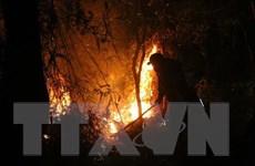 [Video] Hàng trăm người cùng dập lửa đám cháy rừng trong đêm