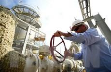 Doanh nghiệp châu Á lo ngại sau vụ tấn công tàu chở dầu ở Trung Đông