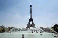 [Video] Một người đàn ông tìm cách trèo lên tháp Eiffel