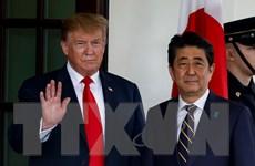 Tổng thống Trump mong mang lại lợi ích thương mại cho cả Nhật, Mỹ