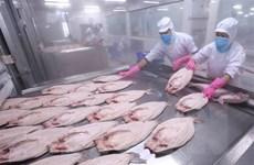 Việt Nam tăng nhanh ảnh hưởng chiến lược, kinh tế tại châu Á-TBD