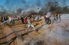 Jordan khẳng định lập trường về giải pháp 2 nhà nước Israel-Palestine