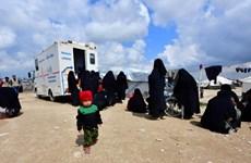 Syria: Hồi hương trẻ mồ côi là con của các tay súng IS người Pháp