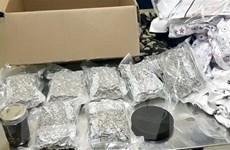 Bắt 3 đối tượng người nước ngoài vận chuyển trái phép 20kg ma túy