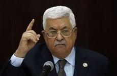 Palestine tái khẳng định phản đối kế hoạch hòa bình Trung Đông