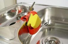 Phát hiện các virus có thể tiêu diệt vi khuẩn trong giẻ rửa bát