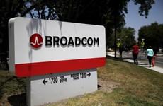 EU điều tra tập đoàn Broadcom của Mỹ vi phạm quy định cạnh tranh