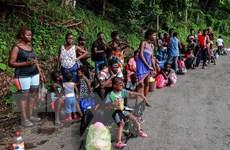 Mexico cấp 40.000 việc làm tại biên giới cho người di cư