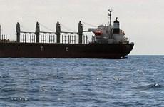 Bộ GTVT gửi văn bản cho Bộ Ngoại giao về cứu nạn tàu cá bị chìm