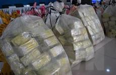 Cảnh sát Thái Lan tổ chức loạt truy quét, thu giữ hơn 1 tấn ma túy đá