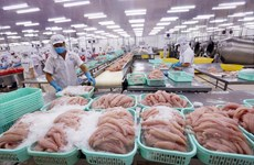 Xây dựng thương hiệu cá tra Việt Nam: Khó nhưng phải làm